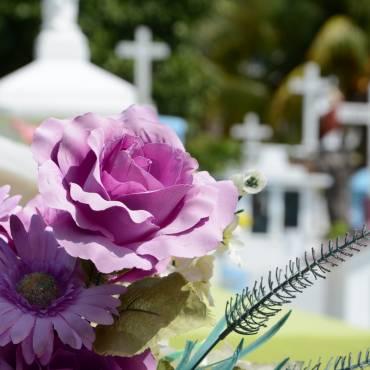 Quins tràmits cal realitzar quan mor un pensionista?