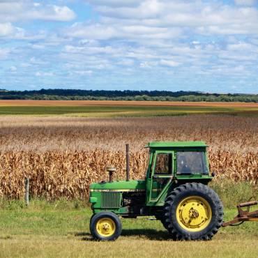 COVID-19. Aprobadas medidas urgentes para favorecer la contratación temporal de trabajadores en el sector agrario
